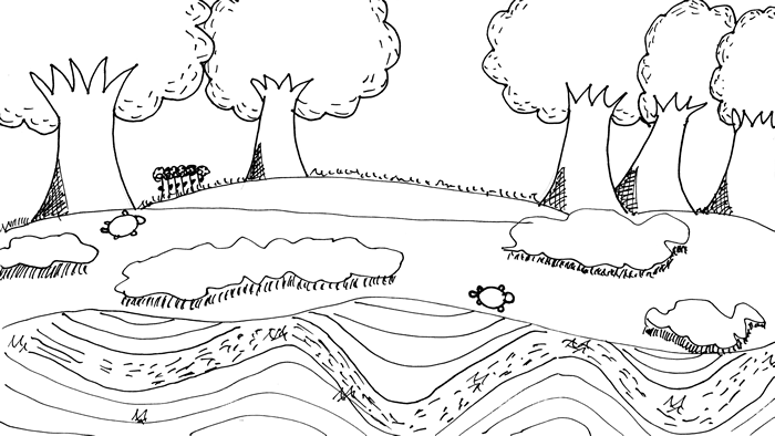 """A Creek Adventure"" illustration: Turtles wander along the wooded banks of a wavy creek"